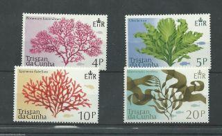 Tristan Da Cunha - 1975 - Sg196 To Sg199 - Cv £ 0.  80 - Unmounted photo
