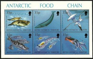 British Antarctic 1994 Birds Penguins Marine Whales Food Chain M/sheet photo