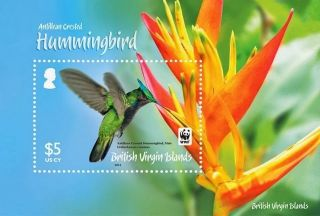 Br.  Virgin Islands Wwf Crested Hummingbird S/sheet Nh photo