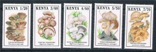 Kenya 1989 Mushrooms Sg 506/10 photo