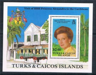 Turks & Caicos 1988 Princess Alexandra Ms Sg945 photo