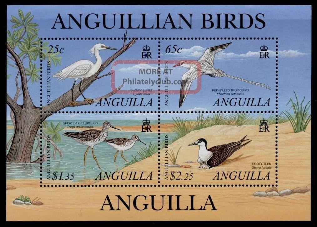 Anguilla 1058 Birds British Colonies & Territories photo