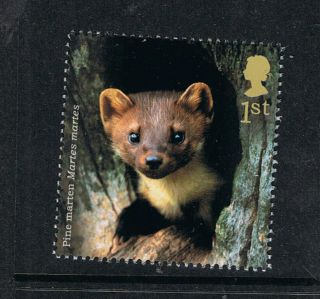 Pine Martin Illustrated On 2004 British Stamp - Nh photo