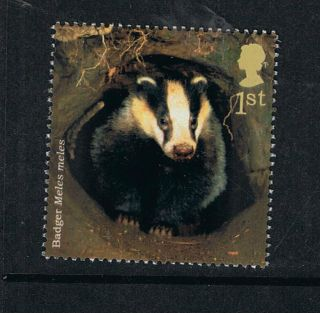 British Badger Illustrated On 2004 British Stamp - Nh photo