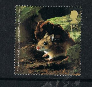 Yellow Necked Mouse Illustrated On 2004 British Stamp - Nh photo