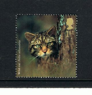 British Wild Cat Illustrated On 2004 British Stamp - Nh photo