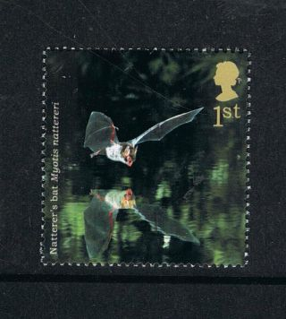 Natter ' S Bat Illustrated On 2004 British Stamp - Nh photo