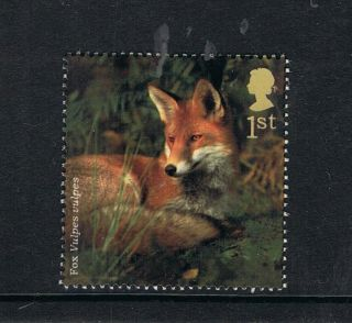 British Fox Illustrated On 2004 British Stamp - Nh photo