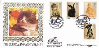(24392) Gb Benham Fdc Rspca Kitten Puppy Rabbit - Cat World Shoreham 23 Jan 1990 photo