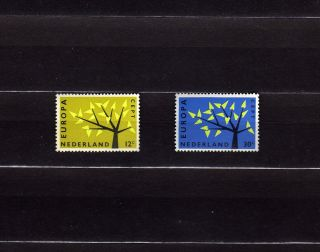 Netherlands 394 - 95 Europa Cept 1962 Tree With 19 Leaves photo