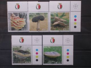 Malta 2009 Mushroom (fungi) Unmounted Scott No 1352/1354 photo