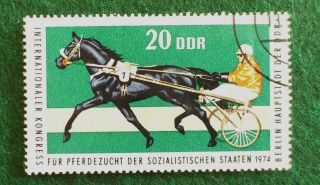 Germany.  Ddr.  1974.  Int.  Horse - Breeders´congress.  Berlin.  20 Ph. photo