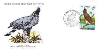 World Wildlife Fund First Day Cover - The Gambia - Long Crested Hawk Eagle No 65 photo