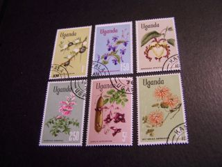 Uganda.  124 - 9.  Flowers. photo