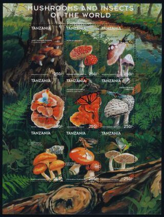 Tanzania 1747 Mushrooms,  Insects,  Butterfly photo