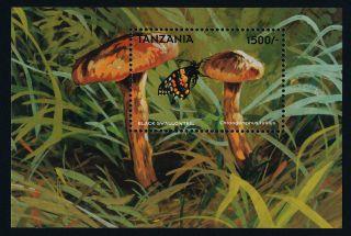 Tanzania 1749 Mushroom,  Butterfly photo