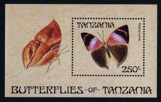 Tanzania 455 Butterfly photo