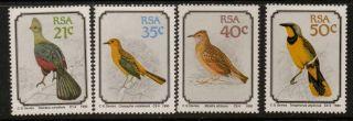 South Africa Sg710/3 1990 Birds photo