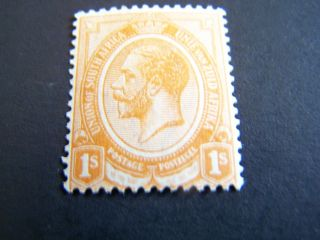 South Africa.  11.  King George V. photo