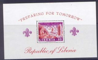 Liberia C176 Scouts photo