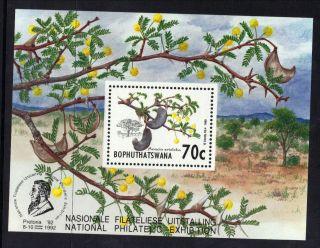 Bophuthatswana South Africa 1992 Acacia Tree Nat Philate Exh Unmount R:b302 photo