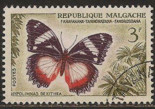 1960 Madagascar,  Malagasy: Scott 310 Butterfly (3 F - Hypolimnas Dexithea) photo