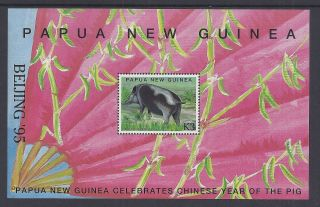 1995 Papua Guinea Beijing ' 95 Year Of The Pig Ms Muh/mnh photo