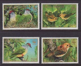 Cook Islands Birds 1016 - 1019 Vf (12945) photo