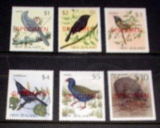 Zealand - Endangered Birds