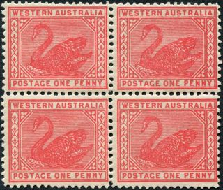 Western Australia 1905 (kevii) 1d Rose - Pink Sg139 Cv £72.  00+ Block Of 4 photo