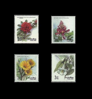 Thailand Stamp,  1990 1411 - 1414 Year Issue,  Flower,  Orchid,  Flora,  Blossom photo