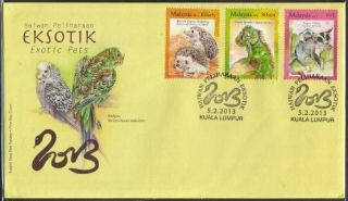 Malaysia 2013 Exotic Pets Hedgehog Iguana Glider Fdc Cover photo