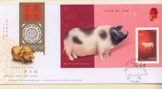 Hong Kong 2007 Fdc Ss China Year Of Pig. photo