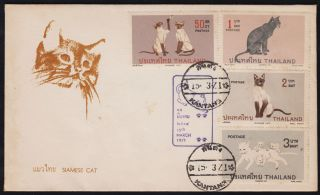 Thailand 1971 Siamese Cat Issue - Fdc photo