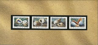 Singapore - Thailand Joint Issue 1997 Shells Features Presentation Pack photo