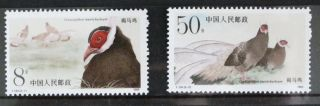 China 1989 T134 Brown Eared Pheasant Stamp Bird photo