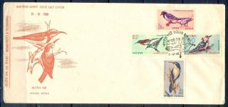 J347 - India 1968.  Bird.  Rhino.  Blue Magpie.  Babbler.  Sunbird.  Woodpecker. photo