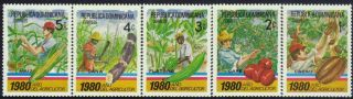 Dominican Agriculture Year Sc 825 - 9 1980 photo