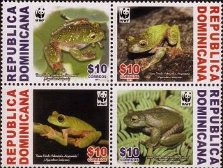 Dominican Wwf Frog Fauna In Danger Of Extinction Sc 1510 2011 photo