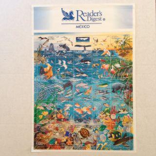 1998 Reader ' S Digest Mexico Marine Life Stamp Sheet Scott 2090a - Y photo