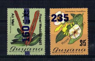 Guyana 1981/2 Royal Wedding 1.  10 Official Commemorative Stamp Ex Booklet photo