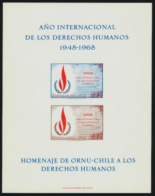 Chile C297a Human Rights photo