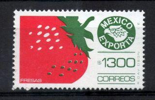 Mexico Exporta Type Xiii 1300p Strawberries W/o Burelage photo
