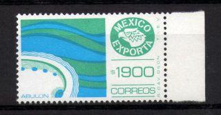 Mexico Exporta Type Xiii 1900p Abalone photo