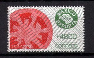 Mexico Exporta Type Xiii 4800p Tomatoes photo