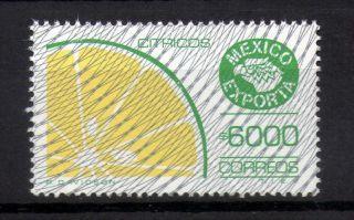 Mexico Exporta Type Xiii 6000p Citrics photo
