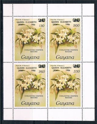 Guyana 1986 Queens 60th Birthday Ms Sg 1685 photo