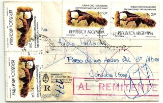 CÓrdoba1983 Express Inflation Rate Wonderful Postage 4 Ant Eater Animal;returned photo