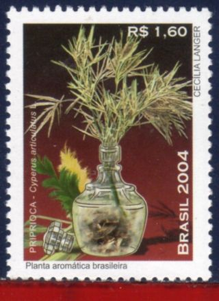 2949 Brazil 2004 - Priprioca,  Aromatic Plant,  Nature - Scott 2949 - photo