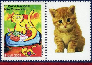 2913 - G1 Brazil 2003 2004 - Cats,  Stamp Personalized,  Sc 2913, photo